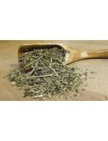 plantas medicinales para ciática
