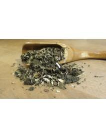 plantas medicinales para desintoxicar el cuerpo