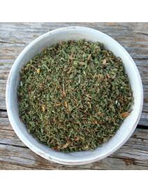 cistus incanus planta medicinal