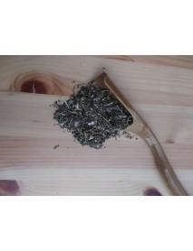 plantas medicinales para bienestar