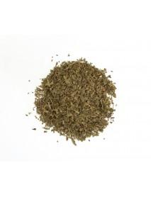 diente de león planta medicinal