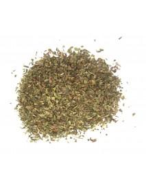 menta  planta medicinal