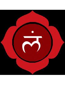 chakra raíz-miladhara