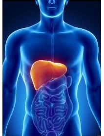 remedio natural para el hígado