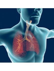 remedio natural para bronquitis