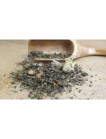 plantas medicinales para alergias respiratorias, primaveral
