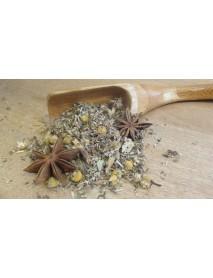 plantas medicinales para estomago