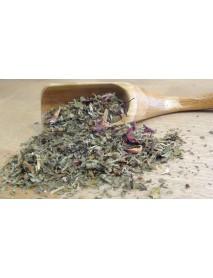 plantas medicinales para ansiedad y depresión