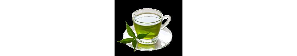 Té verde - Mallorca Tea House